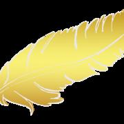 Plume main gold copie