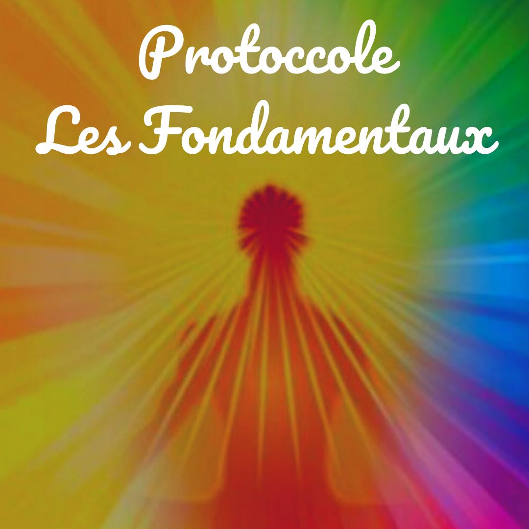 Protocole les fondamentaux